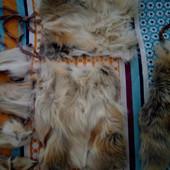 Продам кусочки лисы