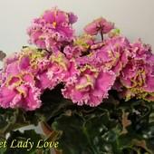 Sweet Lady Love * - дітка