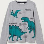 Реглан с динозаврами 4-10 лет H&M