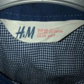 (Лот=1шт на выбор) Рубашка поло для мальчика короткий рукав 110 116 122 128 белый синий