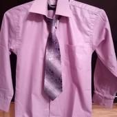 Рубашка та галстук