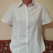 рубашка пог. 54