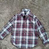 Рубашка Ralph Lauren 5-6 лет оригинал