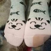 Милі шкарпетки із задоволеними котиками! Лот 1 пара! *Можна докупити* Носки!