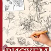 Рисуем цветы, фрукты, овощи ( Все, что нужно знать начинающему художнику)