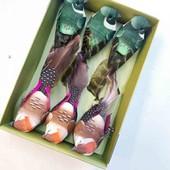 Очень красивые птички на прищепочках, Германия
