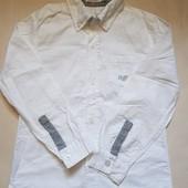 Рубашка Nucleo 6л