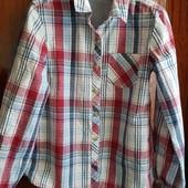 Рубашка Zara 5-6л, 118р, большемерит