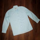 Рубашка мужская, ШГ 57 см. Голубая в зеленую полоску