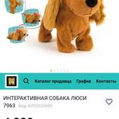 Собачка Люси, состояние идеал.