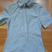 Блузка на короткий рукав.