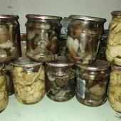 Грибы грибочки опята маринованные 0,5л