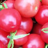 """Томат """" Шалун"""" розовый высокорослый. Супер вкус, дружное созревание плодов. До 2026"""