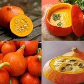 В лоте: тыква порционная или тыква-гигант, семена на выбор