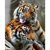 "Алмазная вышивка ""Тигры"". Полная выкладка"