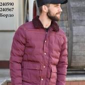 Мужская демисезонная куртка - цвет Хит сезона бордо. л, хл.